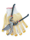 Gardening gloves and secateurs isolated on a white background Stock Photos