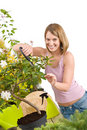Gardening - Happy woman cutting flower Royalty Free Stock Photos