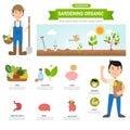 Gardening organic infographic, illustration Royalty Free Stock Photo