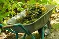 Gardening organic material Royalty Free Stock Photo