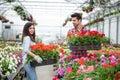 Gardening People, Florist Work...