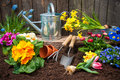 Gardening planting flowers in pot with dirt or soil at back yard Stock Photo
