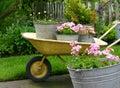Záhradníctvo hrnce