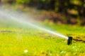 Gardening rasenberieselungsanlagen sprühwasser über gras Lizenzfreies Stockbild
