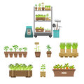 Gardening Related Objects Collection Royalty Free Stock Photo