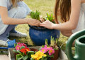 Gardening time Royalty Free Stock Image