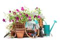Gardening tools and flowers Royalty Free Stock Photography