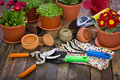 Gardening tools and flowers on the table Royalty Free Stock Images