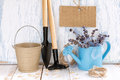 Gardening tools and flowers in a watering can Stock Image