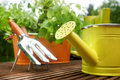 Gardening tools on garden terrace Stock Images