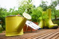 Gardening tools on garden terrace Royalty Free Stock Photo