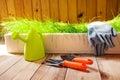Gardening tools indoors Royalty Free Stock Photo