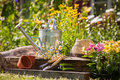 Gardening tools and a straw hat on the grass in the garden Stock Image