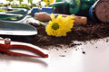 Gardening tools for trees and plants on white table macro Royalty Free Stock Photo