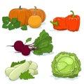 Gardening Vegetables on White
