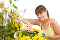 Gardening - woman cutting with pruning shears Royalty Free Stock Image