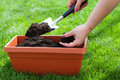 Gardening woman putting compost in a pot Royalty Free Stock Photo