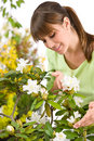 Gardening - woman with Rhododendron flower Royalty Free Stock Images