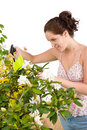 Gardening - woman sprinkling water on flower Royalty Free Stock Photography