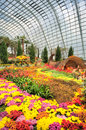 Gardens by the Bay, Flower Dome: Autumn Harvest Stock Photos