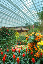 Gardens by the Bay, Flower Dome: Chinese New Year Royalty Free Stock Images