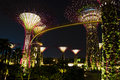 Gardens by the Bay, Singapore Stock Photography