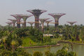 Gardens by the bay in singapore at marina sands hotel Stock Photography