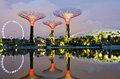 Gardens by the bay in singapore sept night view of supertree grove at on sept spanning hectares of reclaimed land Royalty Free Stock Image