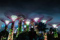 Gardens by the bay or supertree grove singapore jan in singapore night view of famous tourist travel destination Stock Images