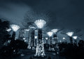 Gardens by the bay or supertree grove in singapore night view of famous tourist travel destination Royalty Free Stock Images