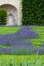 Gardens with the flourishing lavender at castles in valley of loire Royalty Free Stock Photo