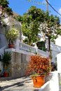 Gardens and plants in la calera narrow streets a lovely little village with flowers on gomera canary islands gomera is one of the Royalty Free Stock Photos