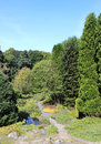 Gardens st andrews botanic garden st andrews view down a small path amongst trees and other plants in in fife scotland Stock Image