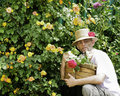 Gardner with straw hat and roses in basket Royalty Free Stock Images