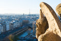 Gargoyle looking at Paris aerial view Royalty Free Stock Photo