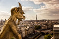 Gargoyle at Notre Dame in Paris Royalty Free Stock Photo