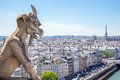 Gargoyle at notre dame stryge and demon of paris overlooking the skyline a summer day selectice focus Stock Photography