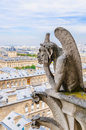 Gargoyle observes Paris Royalty Free Stock Photo