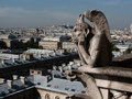 Gargoyle in paris a on notre damme cathedral looking across Royalty Free Stock Photos