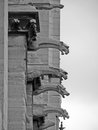 Gargoyles notre dame in black and white Royalty Free Stock Photo