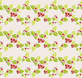 Garland of mistletoe seamless background with christmas concept Royalty Free Stock Photo