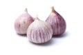 Garlic or Allium ampeloprasum var. ampeloprasum