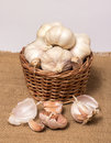 Garlic on basket some heads and a container plain background Stock Images