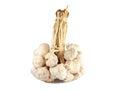 Garlic braid in white ground Royalty Free Stock Photo