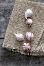 Garlic bulb and cloves on table close up Royalty Free Stock Image
