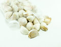 Garlic bulb on white background ingredient of food Stock Photo