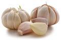 Garlic bulb on white background isolated Royalty Free Stock Photography
