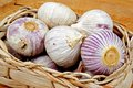 Garlic bulbs in a basket pink wicker on wooden board Royalty Free Stock Photos