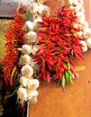Garlic and chilis bunches of red chili pepper hanging out to dry Royalty Free Stock Image