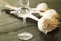 Garlic grappa glass Royalty Free Stock Photography
